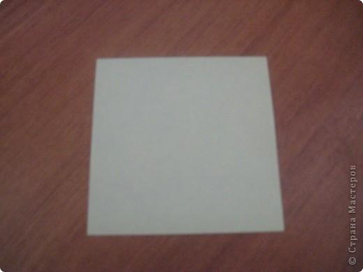 """Это первый способ. Берем квадрат и складываем его пополам,после отгибаем в сторну от нижнего угла к верхнему одну сторону """"книжки"""". Заворачиваем уголки формируя угол и получаем лепесток. Далее делаем лепестков пока не устанем- завиваем их карандашом и склеиваем сначала по рядам - а после ряды между собой!  фото 5"""