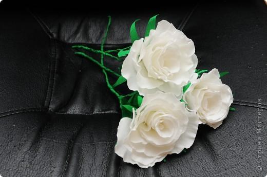 Белые Розы  фото 1