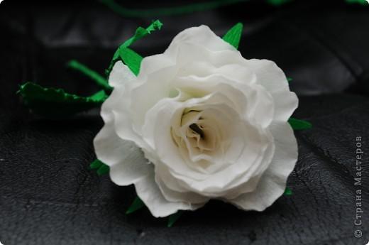 Белые Розы  фото 3