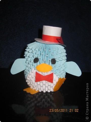 Пингвин-пижон :)