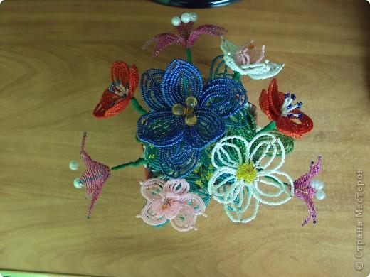 Цветочки. фото 2