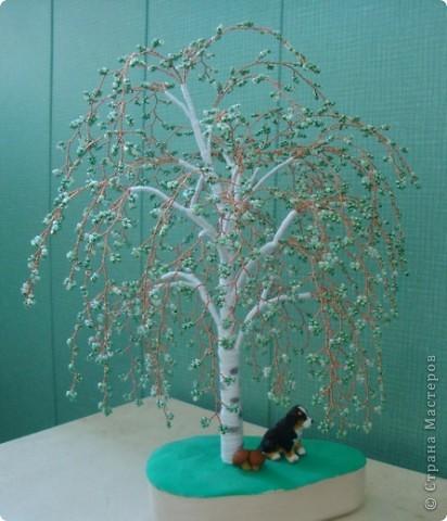 Первое дерево. фото 4