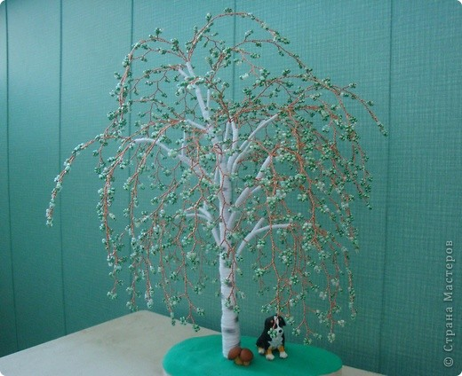 Первое дерево. фото 5
