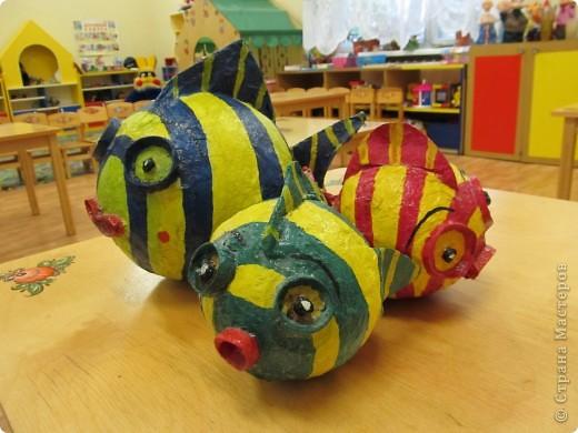 рыбки-пузатики фото 2