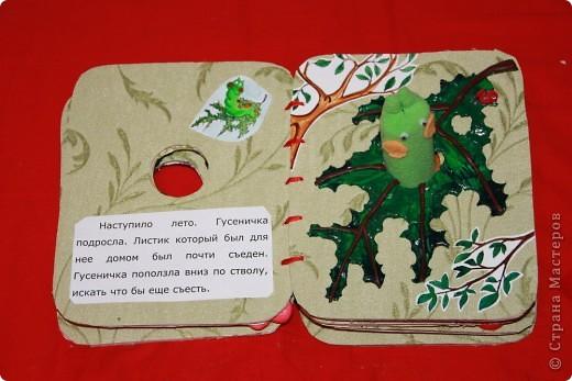 Книжка снаружи Ниже можно посмотреть все развороты книги. А вот ( http://stranamasterov.ru/node/155860 ) другая моя книжка в той же технике фото 9