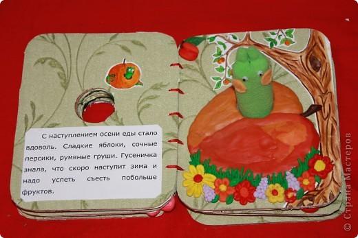 Книжка снаружи Ниже можно посмотреть все развороты книги. А вот ( http://stranamasterov.ru/node/155860 ) другая моя книжка в той же технике фото 10