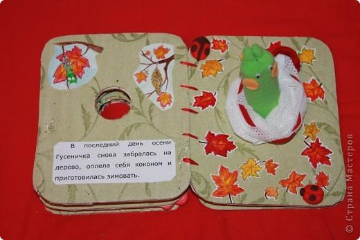 Книжка снаружи Ниже можно посмотреть все развороты книги. А вот ( http://stranamasterov.ru/node/155860 ) другая моя книжка в той же технике фото 11