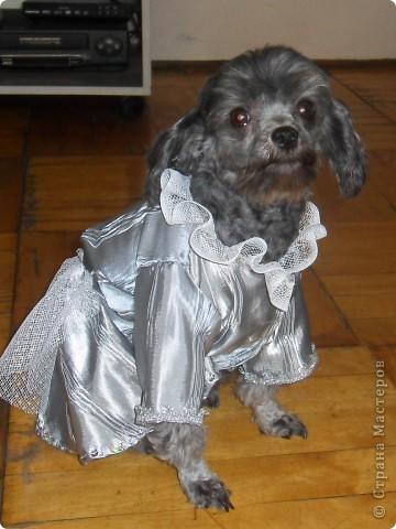 Сидя. Платье из чистого шелка, с рюшами и оборками и еще тесемками, бусинами и паетками. фото 1