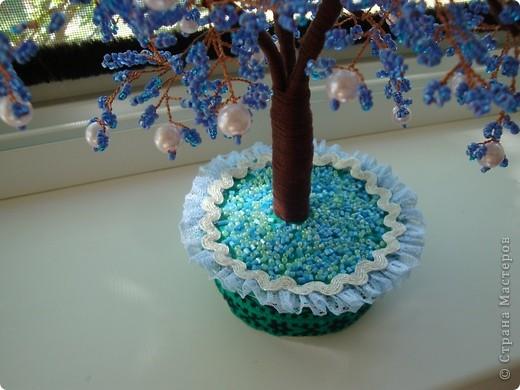 Первое дерево. фото 6