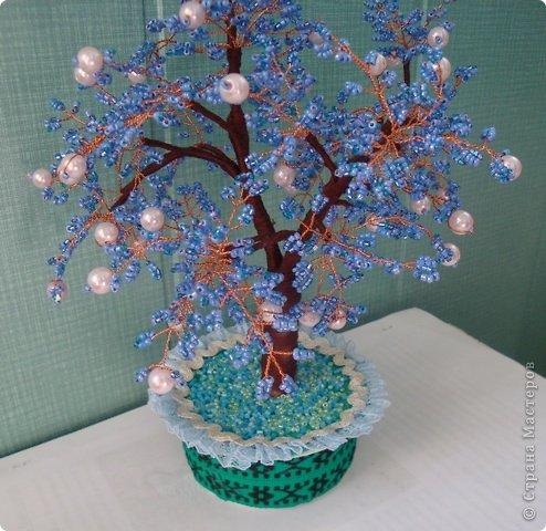 Первое дерево. фото 7