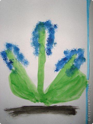 Вот так мы  нарисовали появившиеся первые цветы на нашей клумбе - мускарики.