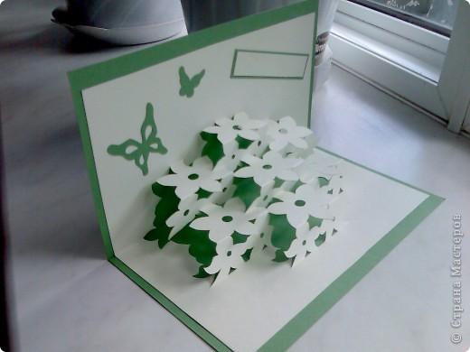 Киригами открытка, повторюшка