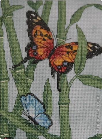 А бабочка крылышками бяк-бяк-бяк-бяк  фото 3
