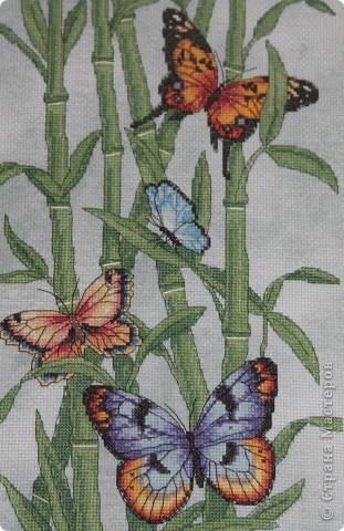 А бабочка крылышками бяк-бяк-бяк-бяк  фото 2