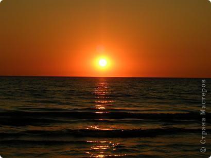Красный закат. Ель. фото 3