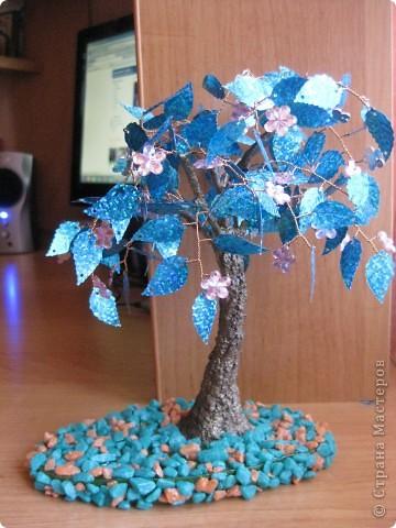 цветущее дерево фото 1