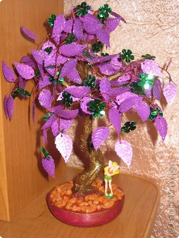 цветущее дерево фото 6