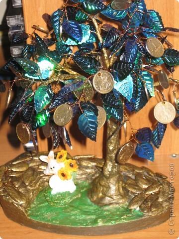 цветущее дерево фото 4