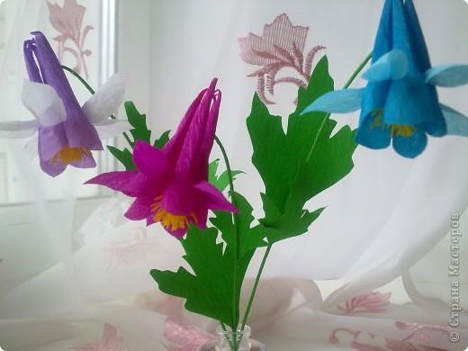 На создание этих цветов меня подтолкнула Юлия П_и_Л. Спасибо, Юлия!!!Цветочек дался не сразу, а только с третьей попытки.И сейчас он далек от идеала. Вот сделала, а в голове еще один вариант родился, как сделать цветочек водосбора более похожим! фото 1