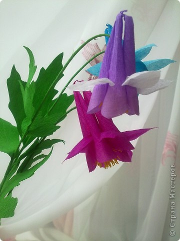 На создание этих цветов меня подтолкнула Юлия П_и_Л. Спасибо, Юлия!!!Цветочек дался не сразу, а только с третьей попытки.И сейчас он далек от идеала. Вот сделала, а в голове еще один вариант родился, как сделать цветочек водосбора более похожим! фото 5