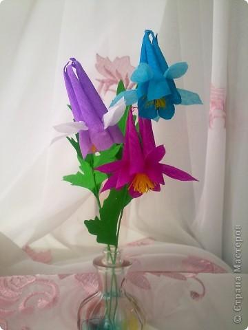 На создание этих цветов меня подтолкнула Юлия П_и_Л. Спасибо, Юлия!!!Цветочек дался не сразу, а только с третьей попытки.И сейчас он далек от идеала. Вот сделала, а в голове еще один вариант родился, как сделать цветочек водосбора более похожим! фото 6