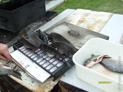 Разрешите мне сегодня побаловать вас ( и себя, любимую) рыбкой копченой........... фото 5