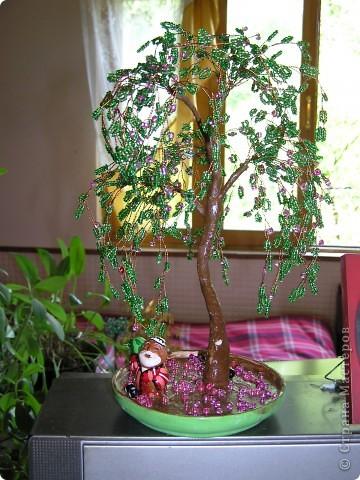 Мамины цветочки и деревья фото 2