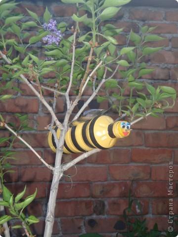 К нав сад прилетели пчелки. Сделаны из пластиковой бутылки, покрашены масляной краской, полоски- черная изолента, крылья- белая пластиковая бутылка, прожилки на крыльях - лак для ногтей черного цвета. фото 1