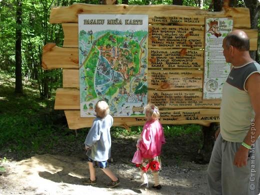 Изучаем карту леса...Куда? фото 1