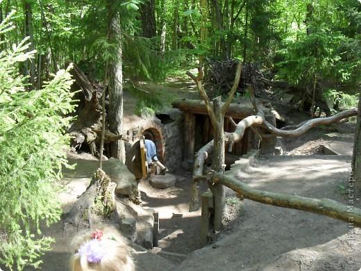 Изучаем карту леса...Куда? фото 21