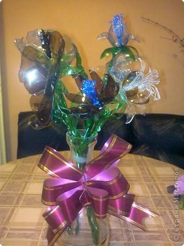 Мои цветьi из пластиковьi бутьiлку фото 9