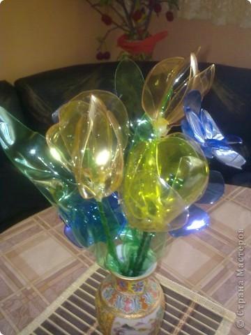 Мои цветьi из пластиковьi бутьiлку фото 5