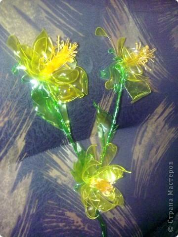 Мои цветьi из пластиковьi бутьiлку фото 2