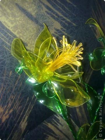 Мои цветьi из пластиковьi бутьiлку фото 3