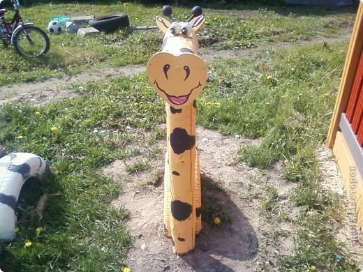 подруга нашей зебры-Жирафа фото 1