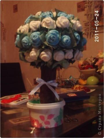 Ах, эти розы....... фото 2