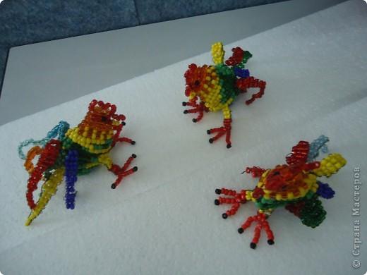 Петушинные забавы фото 1