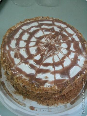 Торт Рыжик фото 4