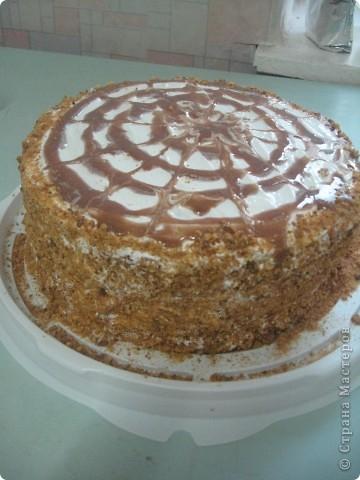 Торт Рыжик фото 1