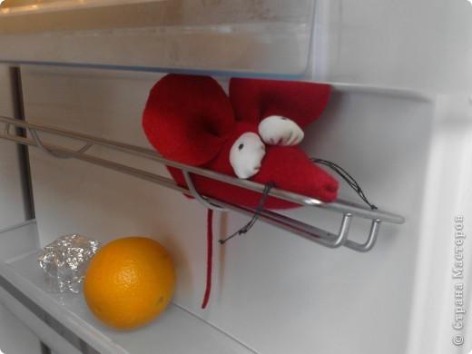 Идею мышки из фетра я где-то видела в дебрях интернета,а тут у знакомых увидела в холодильнике мышку и сыну понравилось...так она у нас появилась фото 1