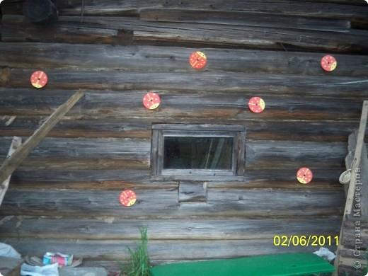 """Всем привет)))) Решила и я преукрасить свой участок))) а то дом у нас старый, невзрачный... захотелась красок... Вот к примеру разрисовала старую бочку под """"морское дно"""" извините за фон))) фото 6"""