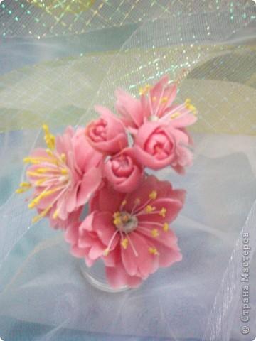 Сакура, собираем для веточки, первые цветочки.
