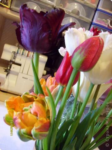 те же цветы....но уже в букетах ....утром дома........два простых ..........не шикарных.........и даже не средних букетика........срезаны......плохо это или хорошо.........кому плохо..........кому хорошо.........в чем истина...........опять игра......игра слов........кто-то любуется ....или кем-то любуются......ИГРА ЖИЗНИ..................продолжается фото 24