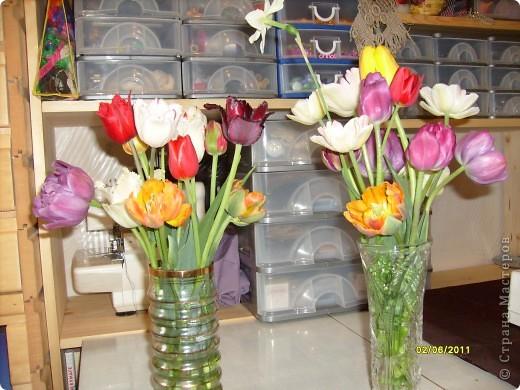те же цветы....но уже в букетах ....утром дома........два простых ..........не шикарных.........и даже не средних букетика........срезаны......плохо это или хорошо.........кому плохо..........кому хорошо.........в чем истина...........опять игра......игра слов........кто-то любуется ....или кем-то любуются......ИГРА ЖИЗНИ..................продолжается фото 1