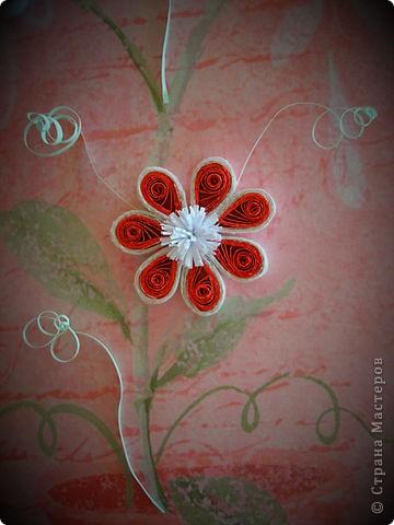 Очередная открытка! :) фото 4
