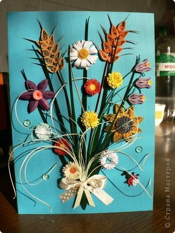 Люблю полевые цветы. фото 2
