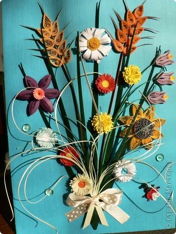 Люблю полевые цветы. фото 1