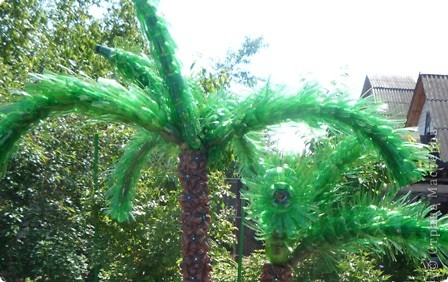 Наша пальма. Страна Мастеров