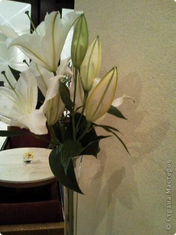 Дорогие мастерицы. Прежде чем слепить цветок я собираю материал. Рассматриваю, фотографирую. Вот нашла лилии, где видно, как собран цветок, как крепятся веточки и пр. мелкие детали. Выкладываю. Возможно это поможен нашим резидентам. фото 3