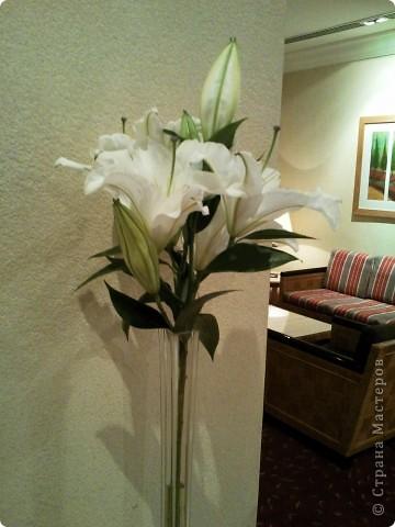 Дорогие мастерицы. Прежде чем слепить цветок я собираю материал. Рассматриваю, фотографирую. Вот нашла лилии, где видно, как собран цветок, как крепятся веточки и пр. мелкие детали. Выкладываю. Возможно это поможен нашим резидентам. фото 4